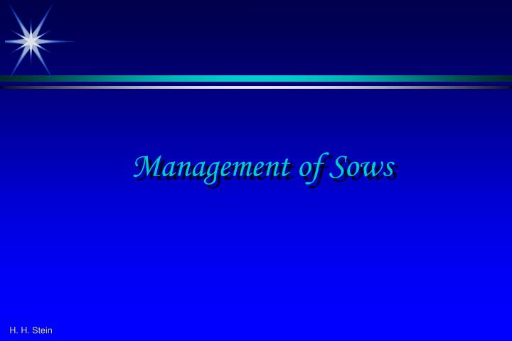 management of sows n.