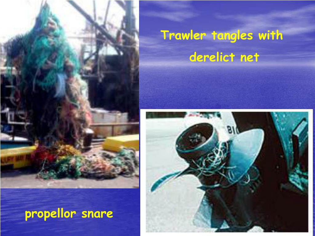 Trawler tangles with