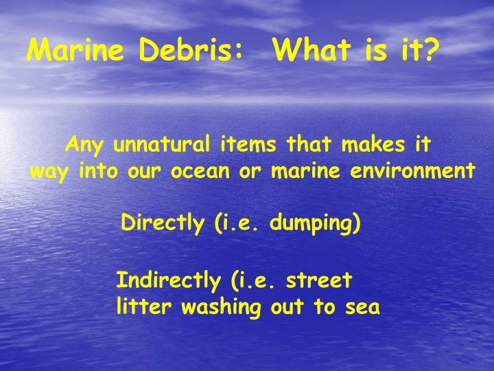 Marine Debris:  What is it?