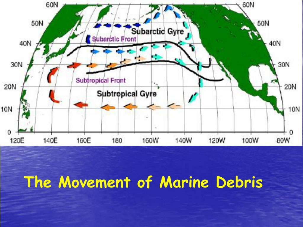 The Movement of Marine Debris
