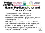 human papillomaviruses and cervical cancer