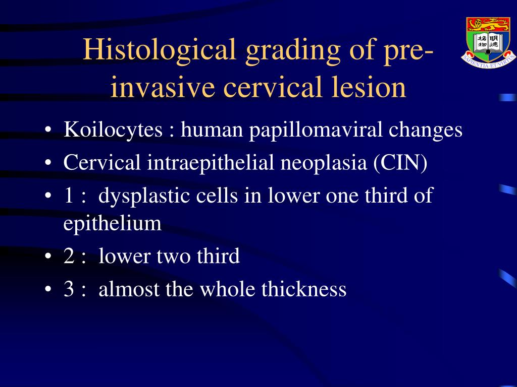 Histological grading of pre-invasive cervical lesion
