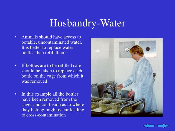 Husbandry-Water