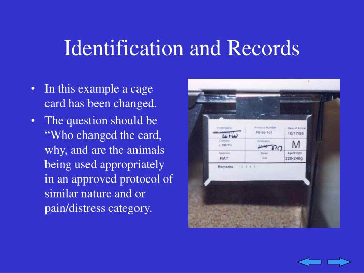 Identification and Records