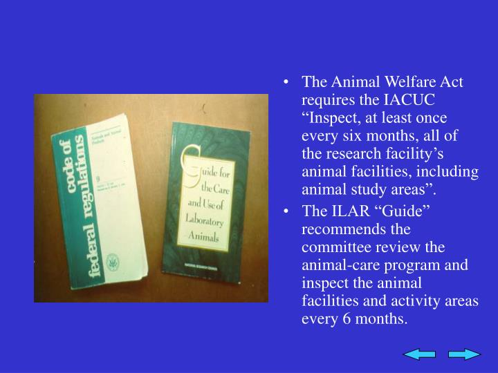 "The Animal Welfare Act requires the IACUC ""Inspect, at least once every six months, all of the research facility's animal facilities, including animal study areas""."