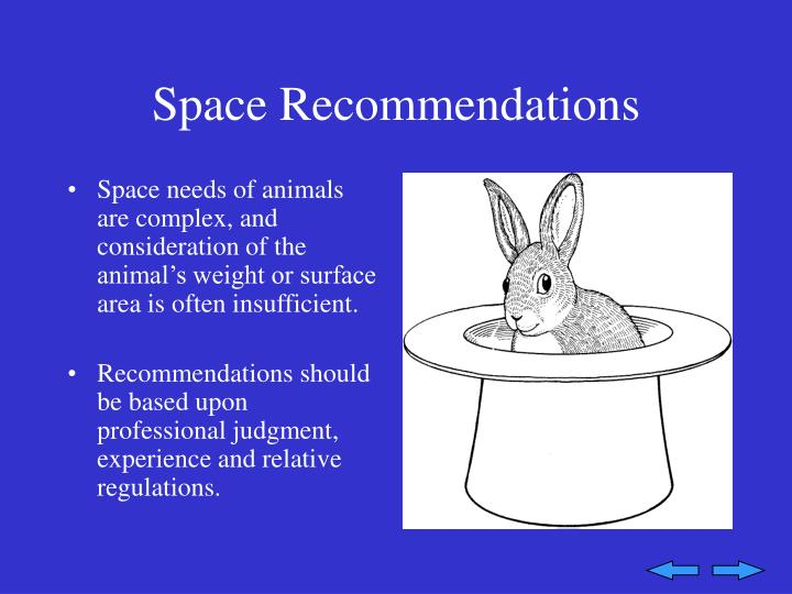 Space Recommendations