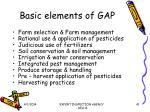 basic elements of gap