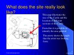 what does the site really look like