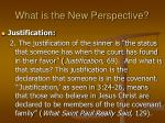what is the new perspective13