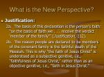 what is the new perspective14