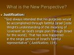 what is the new perspective15