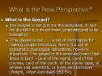 what is the new perspective34