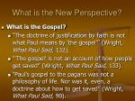 what is the new perspective35