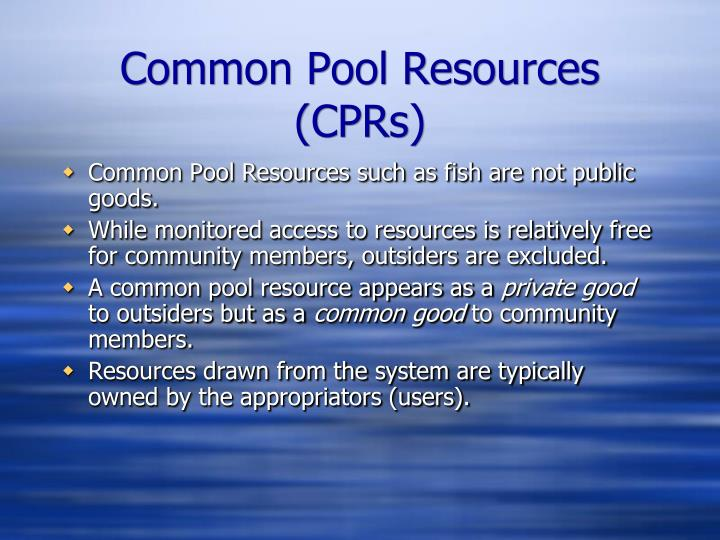 Common Pool Resources (CPRs)