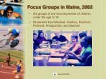 focus groups in maine 2002