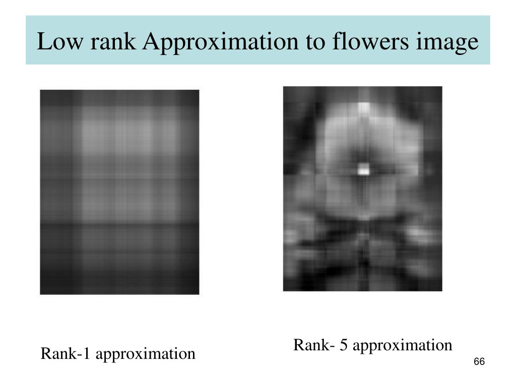 Low rank Approximation to flowers image