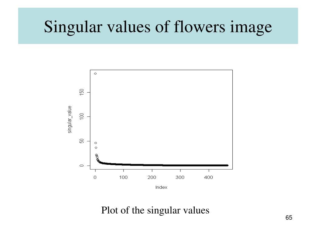 Singular values of flowers image
