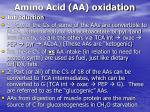 amino acid aa oxidation