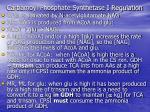 carbamoyl phosphate synthetase i regulation
