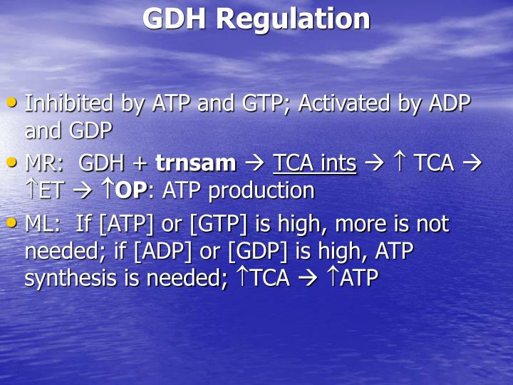 GDH Regulation
