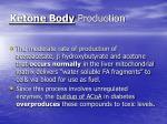 ketone body production
