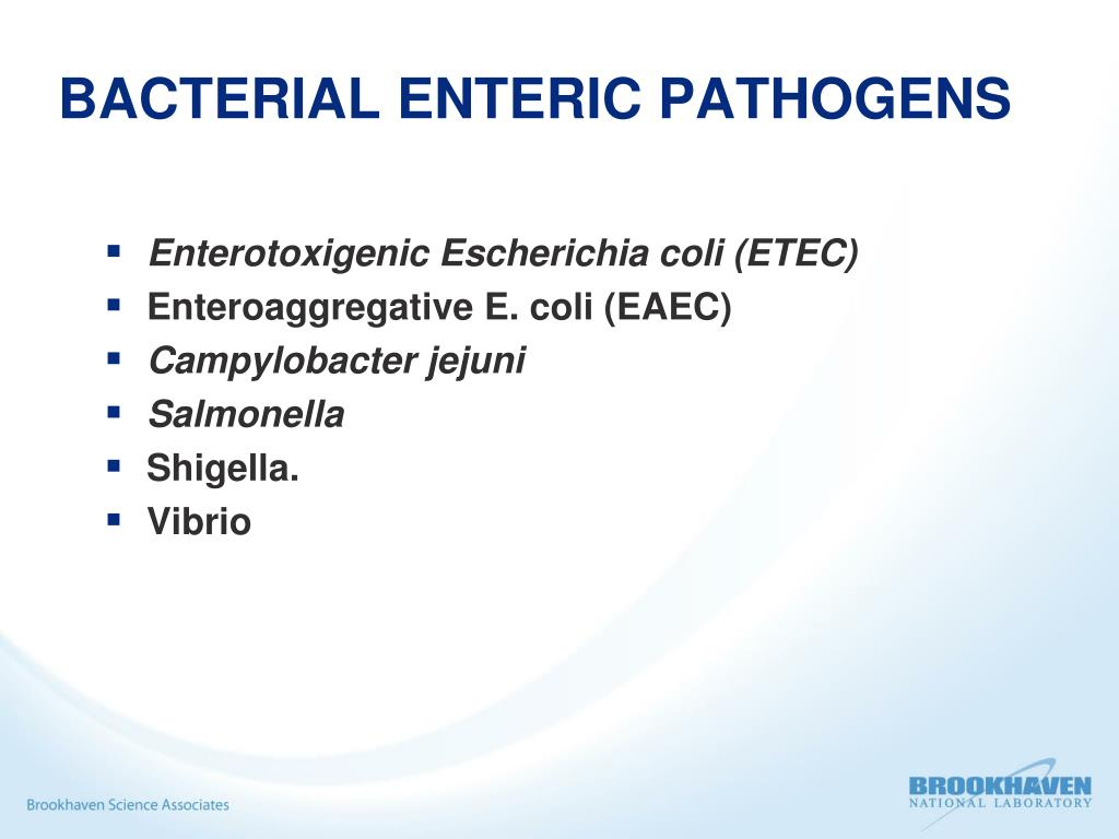 BACTERIAL ENTERIC PATHOGENS