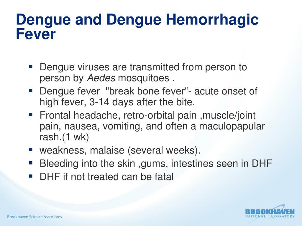 Dengue and Dengue Hemorrhagic Fever