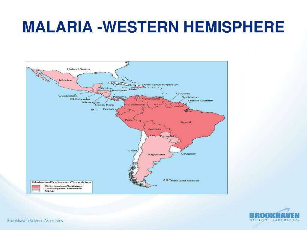 MALARIA -WESTERN HEMISPHERE