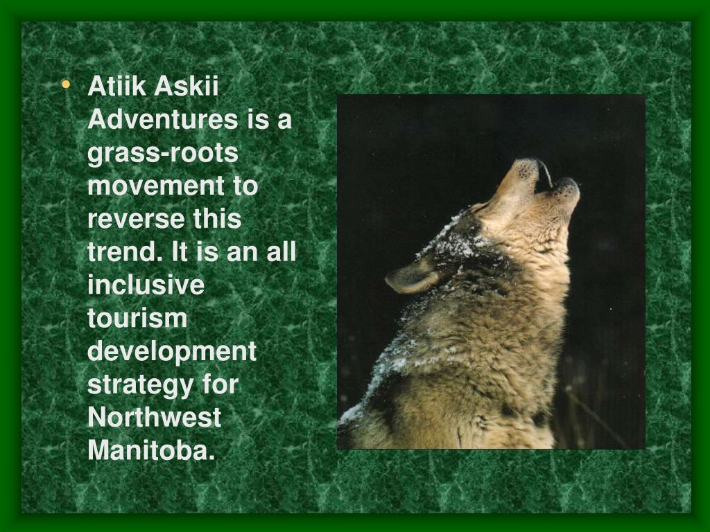 Atiik Askii Adventures is a grass-roots movement to reverse this trend. It is an all inclusive tourism development strategy for Northwest Manitoba.