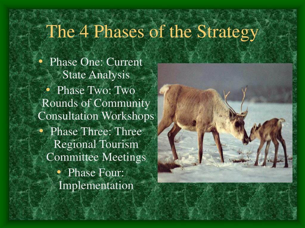 The 4 Phases of the Strategy