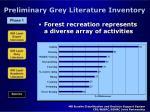 preliminary grey literature inventory