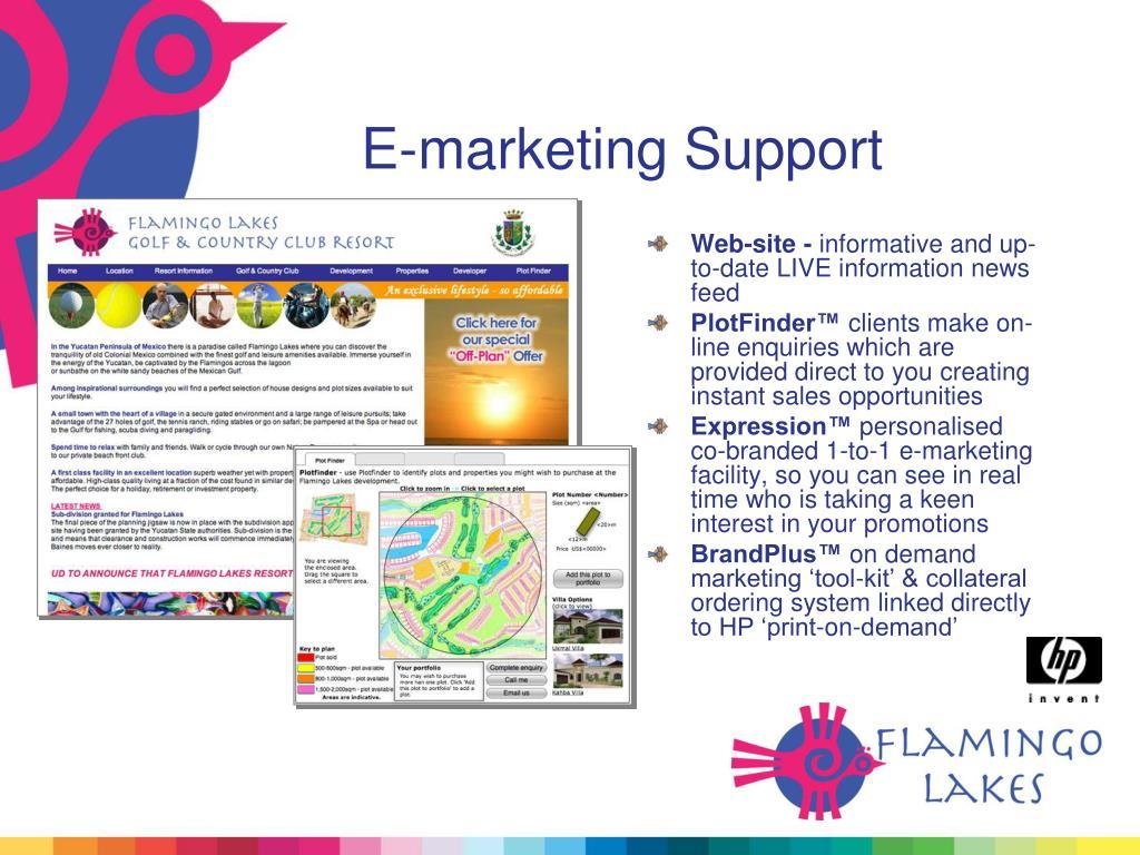 E-marketing Support