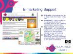 e marketing support