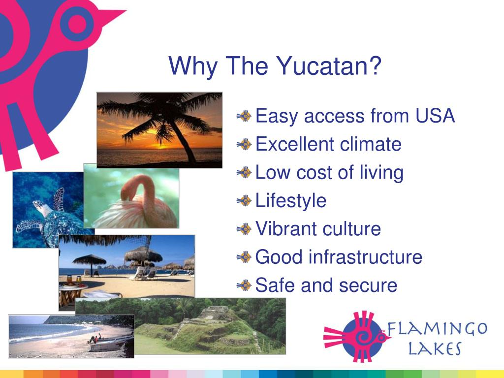 Why The Yucatan?