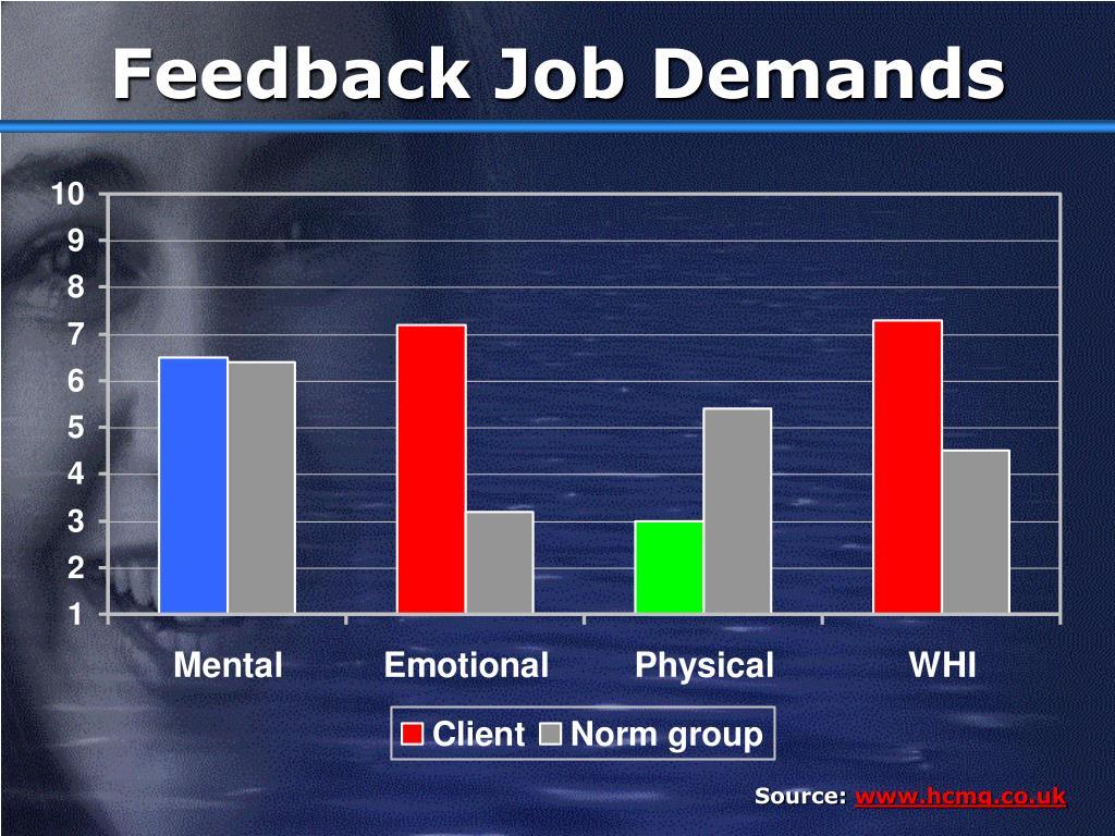 Feedback Job Demands