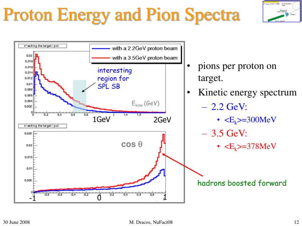 Proton Energy and Pion Spectra