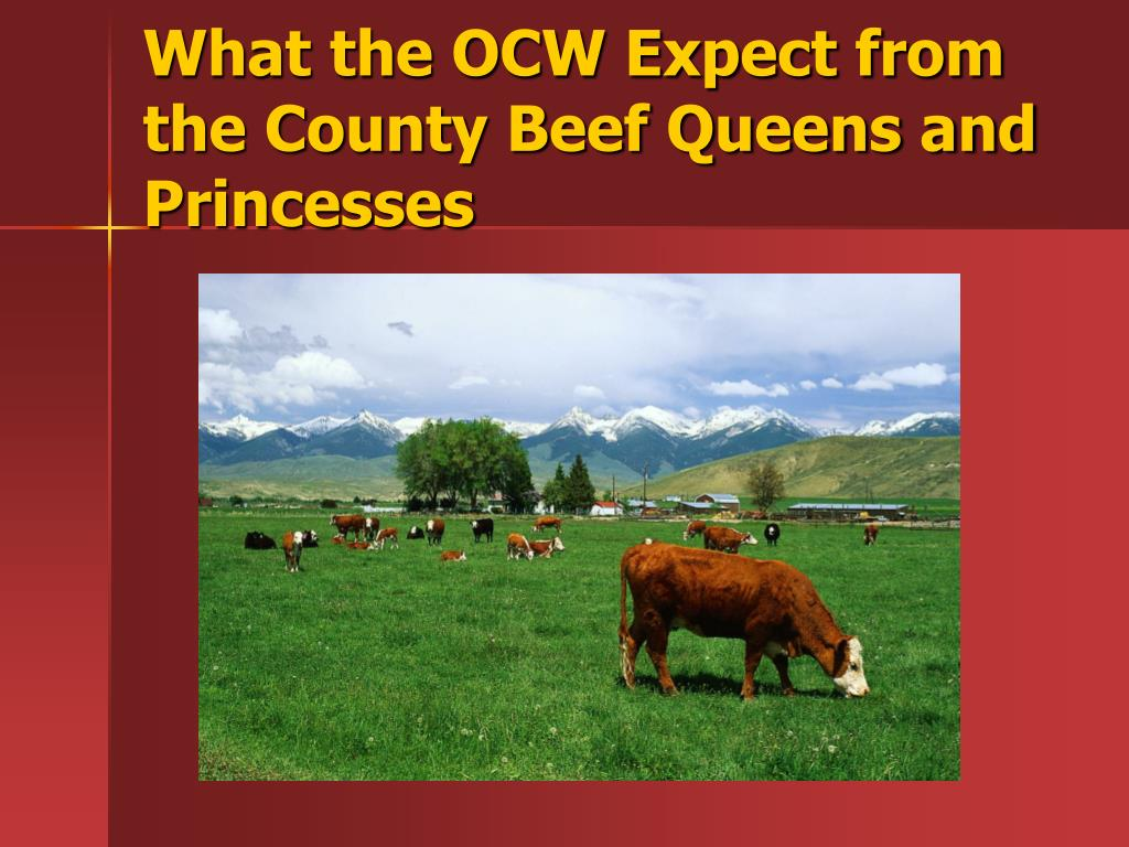 What the OCW Expect from the County Beef Queens and Princesses