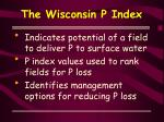 the wisconsin p index3