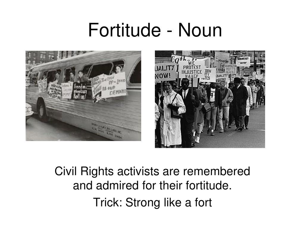 Fortitude - Noun