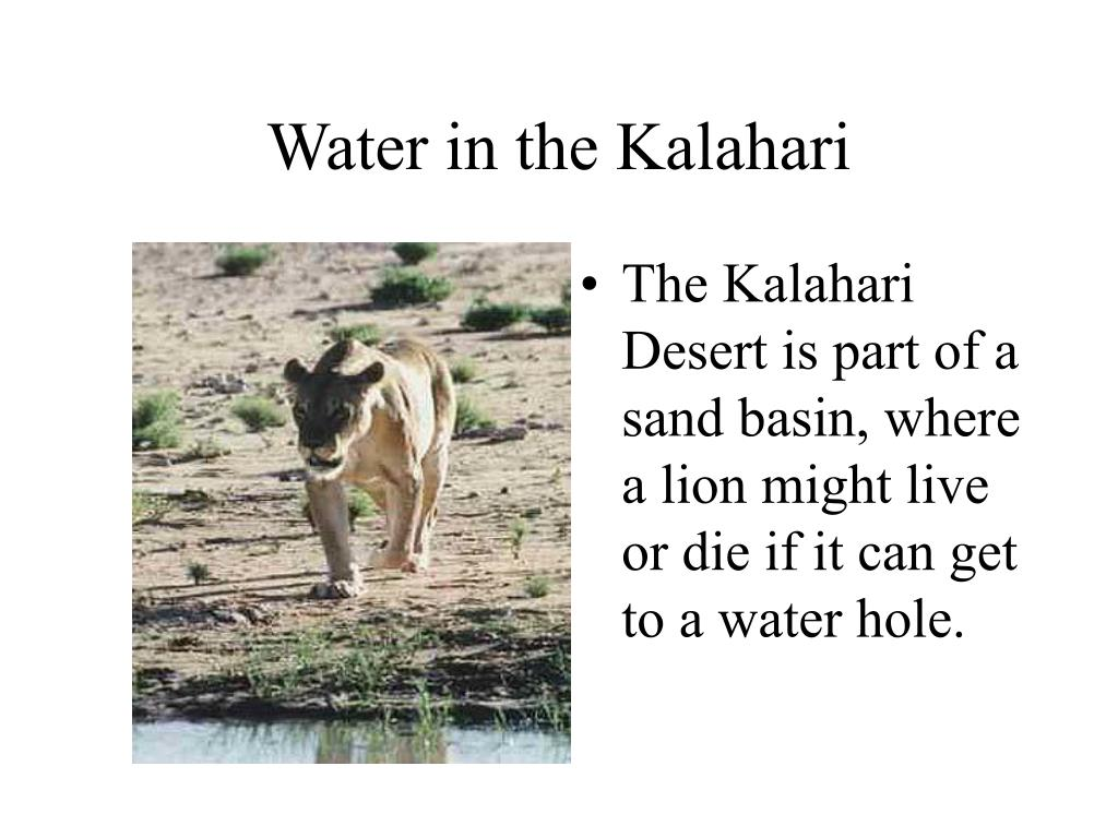 Water in the Kalahari