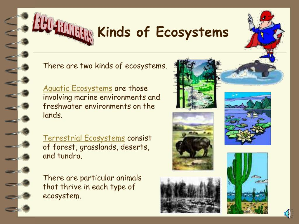 Kinds of Ecosystems