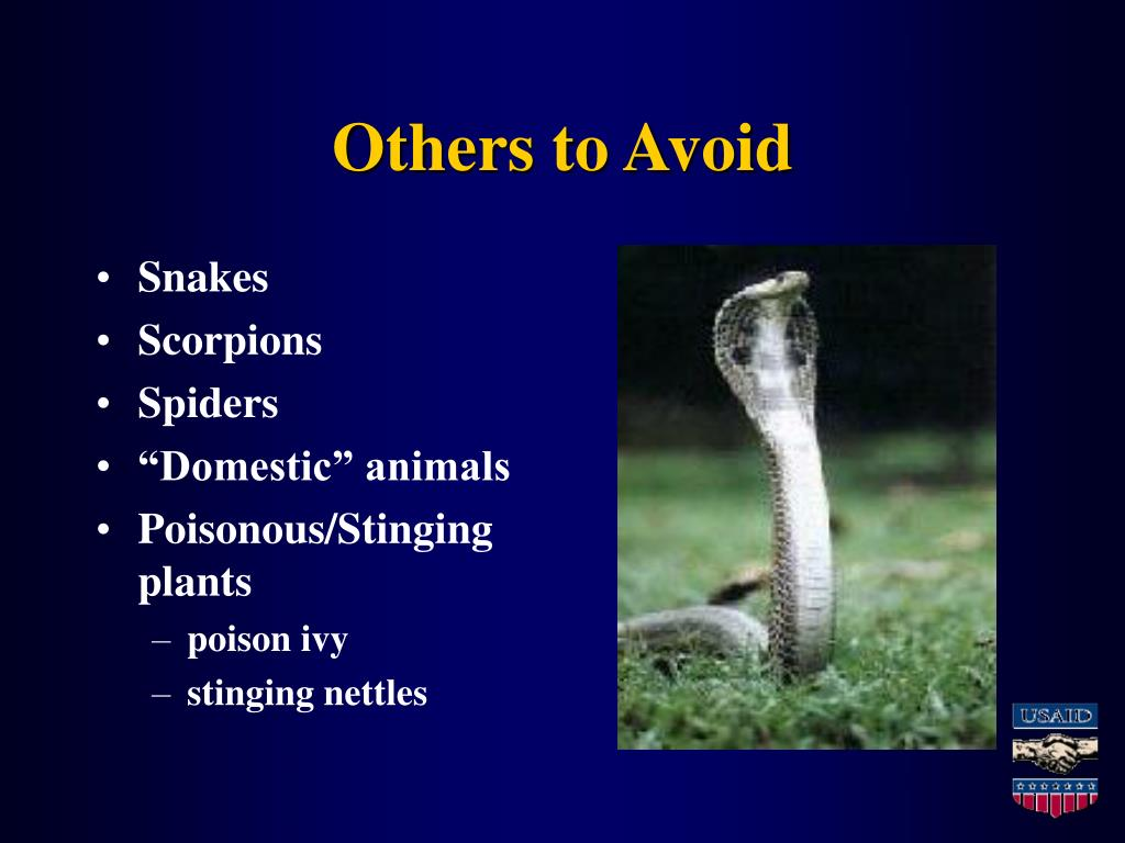 Others to Avoid