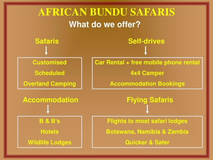African bundu safaris2
