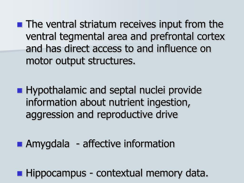 The ventral striatum receives input from the ventral tegmental area and prefrontal cortex and has direct access to and influence on motor output structures.