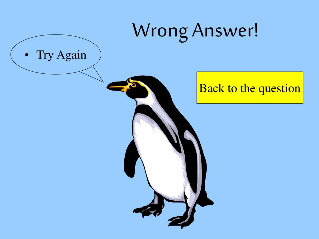 Wrong Answer!
