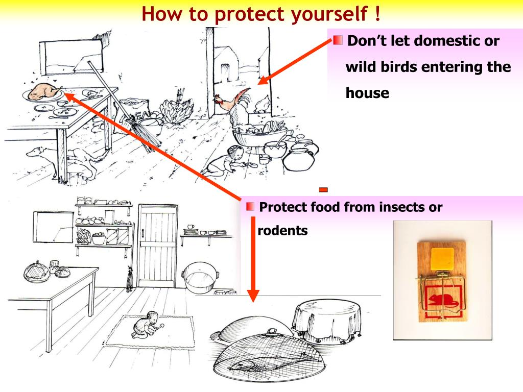 How to protect yourself !