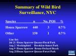 summary of wild bird surveillance nyc
