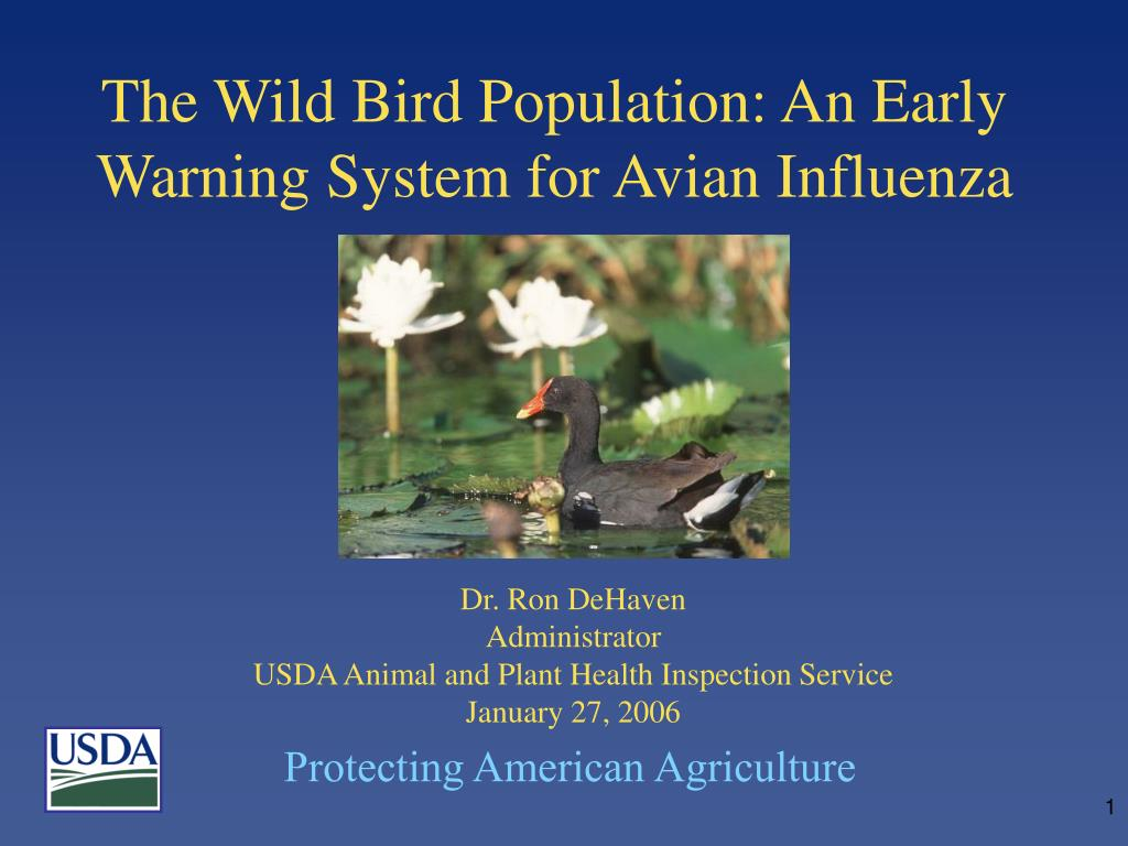 the wild bird population an early warning system for avian influenza l.
