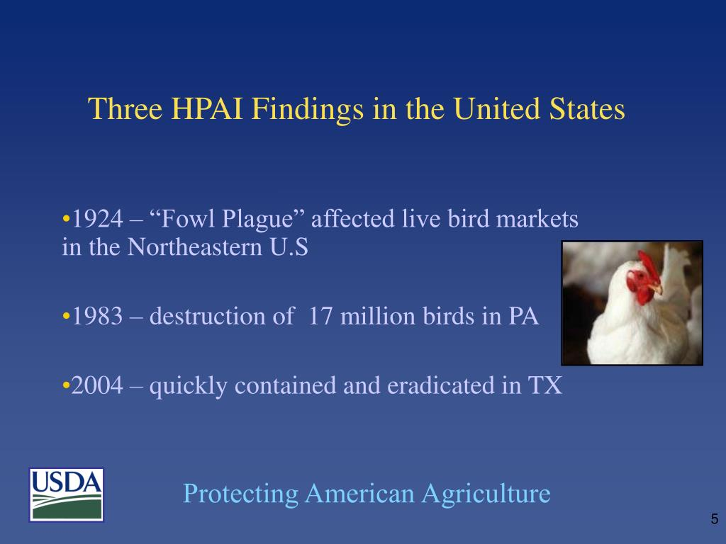 Three HPAI Findings in the United States