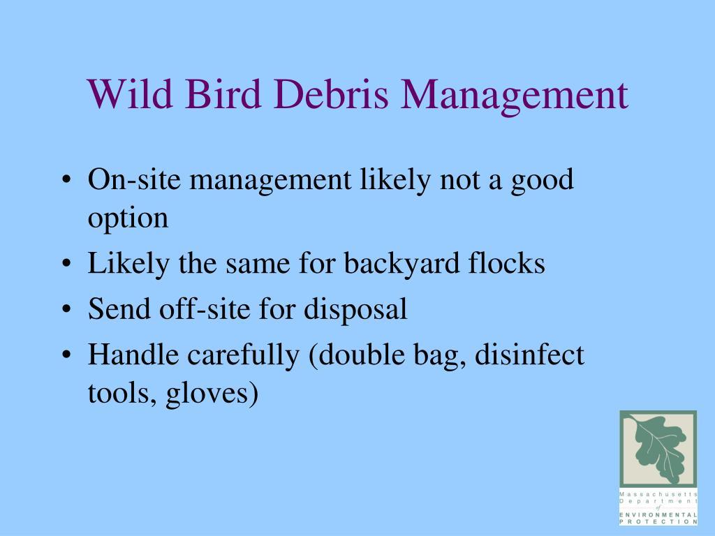 Wild Bird Debris Management